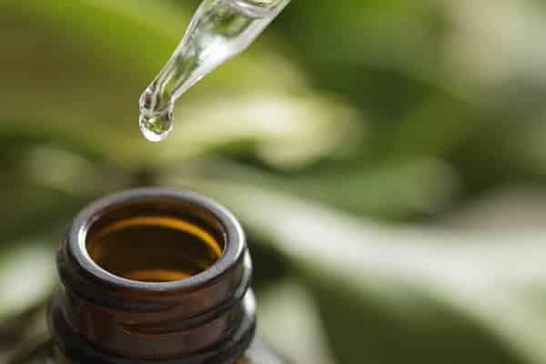 óleo de sândalo para queda de cabelo
