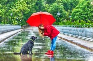 como proteger o cabelo da umidade chuva